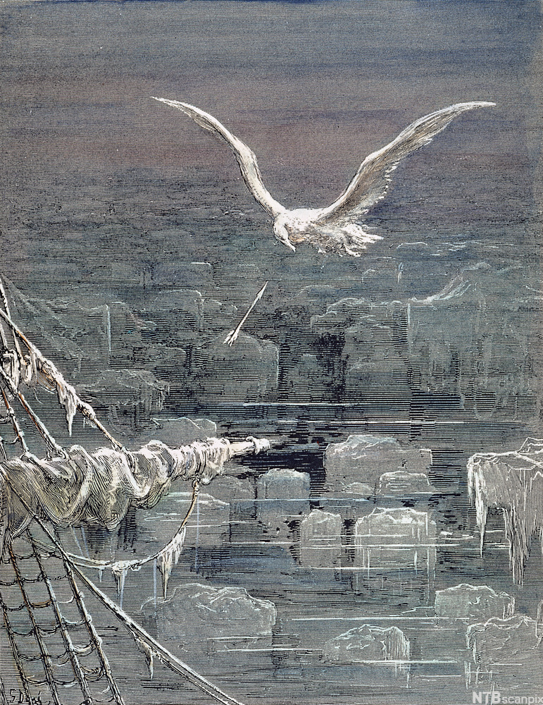 COLERIDGE: ANCIENT MARINER. The mariner shoots the albatross. Wood engraving after Gustave Doré (1832-1883) for Samuel Taylor Coleridge's 'Rime of the Ancient Mariner', 1798.